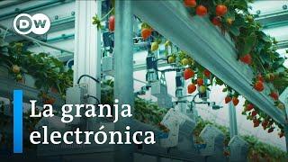 Enlaces - La granja electrónica