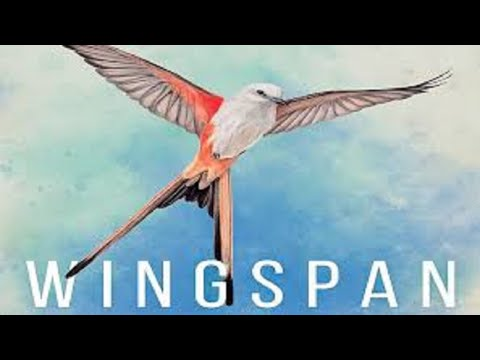 Wingspan: Discussion