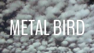 Marie Hines: Metal Bird Official Video
