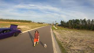 Waking the dog chill mode... fpv freestyle