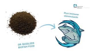 Aquarium Münster Dr. Bassleer Biofish Food Flakes Forte