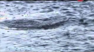 Видео о рыбалке на реке оленек