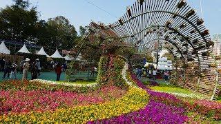 Video : China : The Hong Kong flower show 香港花卉展 2018
