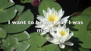 The Way I was Made (with lyrics) by Chris Tomlin