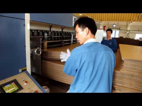 Lead Edge Feeder Flexo Printer Slotter Die Cutter Machine