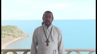 Кто и что избавляет от рукоблудия. Священник Игорь Сильченков