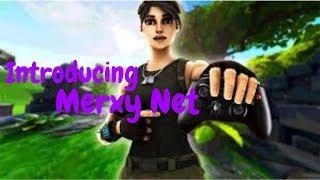 Introducing Merxy Nets!