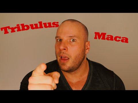 Tribulus, Maca, DAA Testobooster oder Abzocke?
