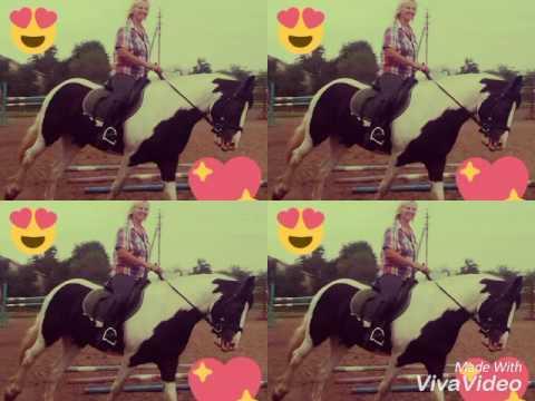 Для моего самого любимого тренера.Подарок на день лошади.Друзья.💖💖