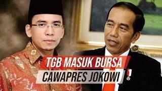 Dikonfirmasi Jokowi Masuk