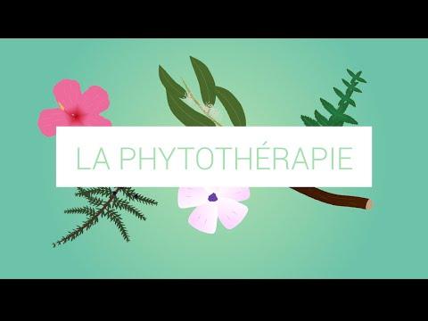 La Phythotérapie