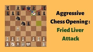 Aggressive Chess Openings : Fried Liver Attack