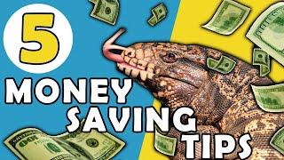 5 Reptile Money Saving Tips!