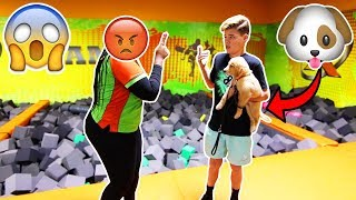 BRINGING MY PUPPY TO A TRAMPOLINE PARK! *KICKED OUT*