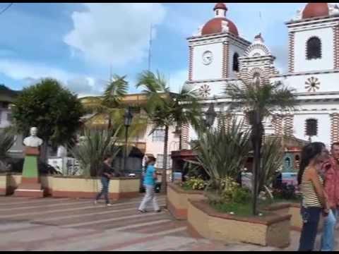 Video de Gestión GSN 2013