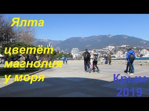 Крым, Ялта 2019, Набережная 30 марта. Многолюдно, тепло, зацвела магнолия