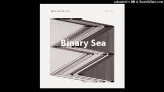 11 Binary Sea