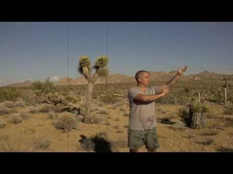 Daxuan 8 Doors Therapeutic Nei Gong - YouTube