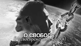 Андрей Ваджра. О свободе (Несвоевременные мысли) 27.02.2018. (№22)