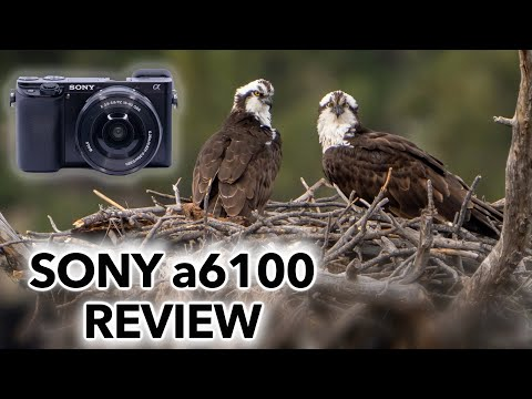 External Review Video wcutVgjAZWc for Sony A6100 (ILCE-6100) APS-C Mirrorless Camera