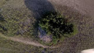 Fpv Drone afternoon flying with friends and making training fingers