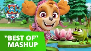 PAW Patrol Best of Mashup 6 | Pup Tales, Toy Episodes, and More! | PAW Patrol Official & Friends