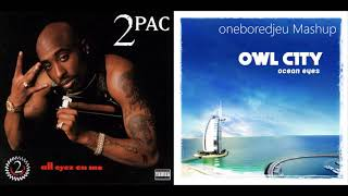 2Fly - Owl City vs. 2Pac (Mashup)