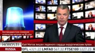 Владимир Путин запретил чиновникам мигалки