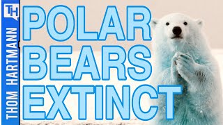 Climate Change Will Take Hockey, and Polar Bears (w/ Dr. Stephen Amstrup)