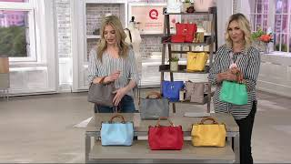Dooney & Bourke City Leather Mini Barlow Crossbody Handbag On QVC