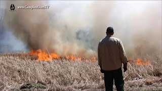 Prescribed Fire or Controlled Burn - Dangerously beneficial to your land. CD TV Ep. 10