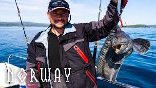 Рыбалка в норвегии тур для одного