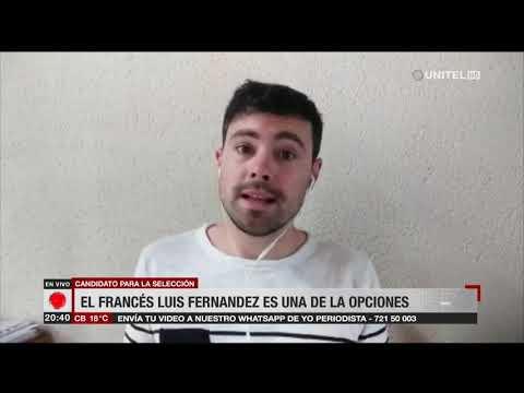 El francés Luis Fernández es una de las opciones para la selección