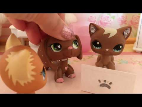 LPS:  Valentine's Day Special! 💗 |  Lps Kitkat ♡