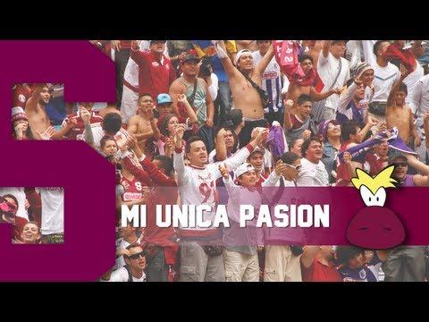 """Ultra Morada - Mi unica pasion"" Barra: Ultra Morada • Club: Saprissa • País: Costa Rica"