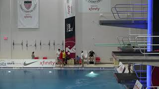 2018 USA Diving Senior National Championships Mens 3M Prelims
