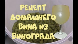 Рецепт домашнего ВИНА из белого винограда.