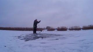 Фион рыбалка волгоград отчеты о рыбалке