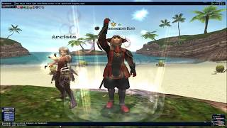 Final Fantasy XI: Red Mage Guide