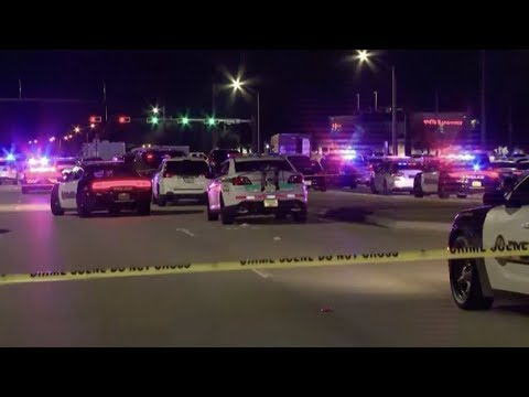 Four dead after Miami jewelry heist leads to carjacking, chase and shootout