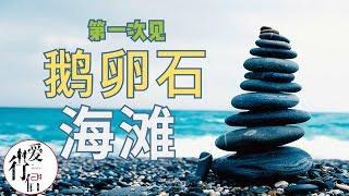 台湾旅拍vlog-6【超棒的鹅卵石海滩】最美七星潭 Taiwan Tourism、vlog、Pacific Ocean、Beautiful Beach