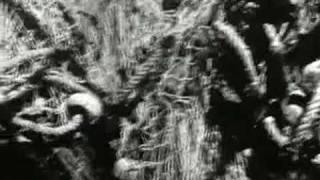 חולתא 1947 מארכיון הסרטים של ספילברג(1 סרטונים)