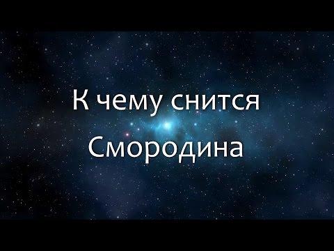 К чему снится Смородина (Сонник, Толкование снов)