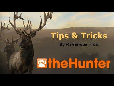 TheHunter - Tips & Tricks