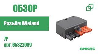 Разъём Wieland 7P арт. 65322069