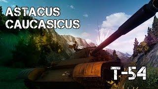 Разбор боя Т-54  - Перевал / GustikPS