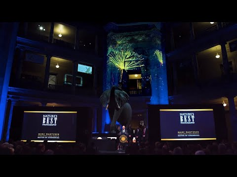 Epson Laser Projectors | Projection Mapping at Nature's Best Awards Gala