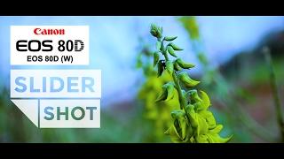 Slider Shot Canon 80D