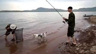 Рыбалка на сазана в хакасия
