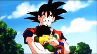 Son Gohan  - (Dragon Ball) - Gohan Accident Memories Of Gohan